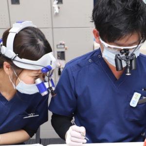 ドクター勉強会で歯周外科実習をしましたのイメージ